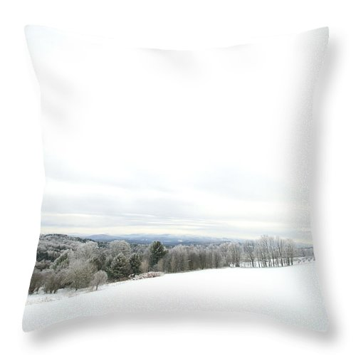 Winter Throw Pillow featuring the photograph Winter Landscape by Jessica Wakefield