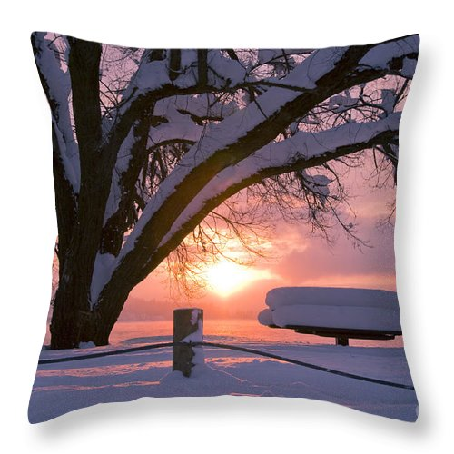 Winter Throw Pillow featuring the photograph Winter Light by Idaho Scenic Images Linda Lantzy