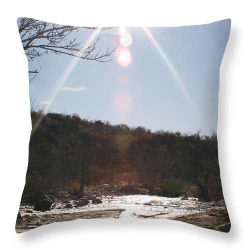 Winter Throw Pillow featuring the photograph Winter Light by Nadine Rippelmeyer