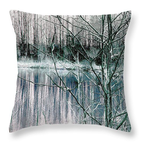 Landscape.winter Throw Pillow featuring the photograph Winter by Linda Sannuti