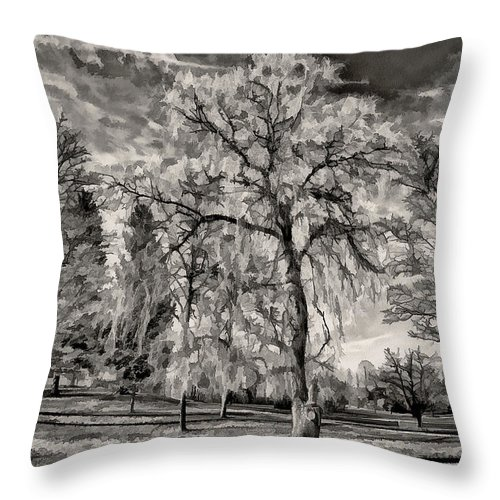 Trees Throw Pillow featuring the photograph Winter Marches On Polaroid by Steve Harrington