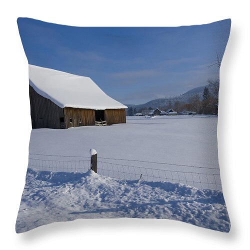 Barn Throw Pillow featuring the photograph Winter Meadow by Idaho Scenic Images Linda Lantzy