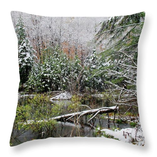 Winter Throw Pillow featuring the photograph Winter On The Beaver Pond by Laurie Baird