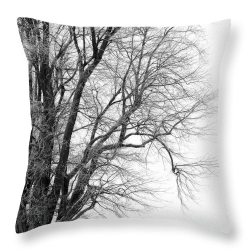 Red Barn Throw Pillow featuring the photograph Winter Red And White by Cathy Beharriell