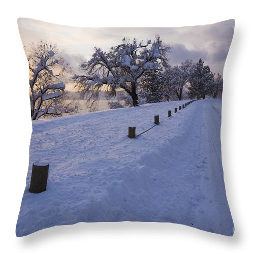 Idaho Throw Pillow featuring the photograph Winter Road by Idaho Scenic Images Linda Lantzy