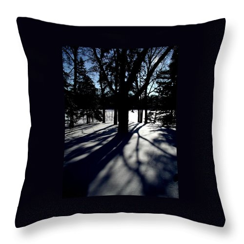 Landscape Throw Pillow featuring the photograph Winter Shadows 2 by Tom Reynen