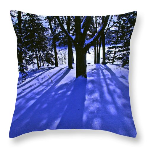 Landscape Throw Pillow featuring the photograph Winter Shadows by Tom Reynen