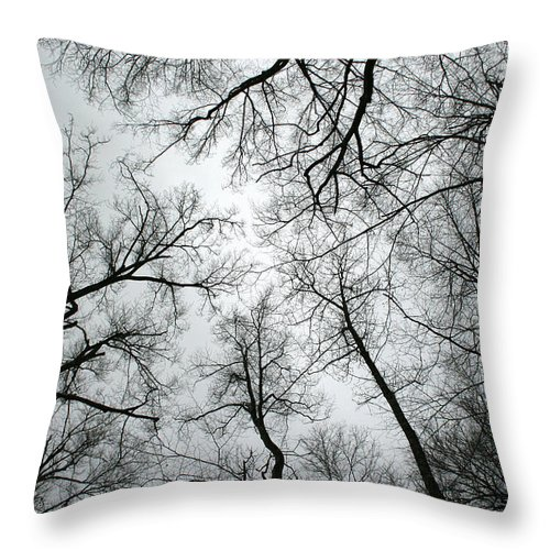Winter Sky Tree Trees Grey Gloomy Peaceful Quite Calm Peace Cloudy Overcast Dark Throw Pillow featuring the photograph Winter Sky by Andrei Shliakhau