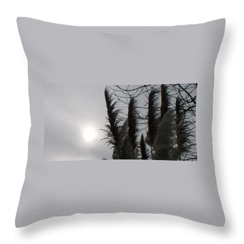 Winter Throw Pillow featuring the photograph Winter Sun by Valerie Josi