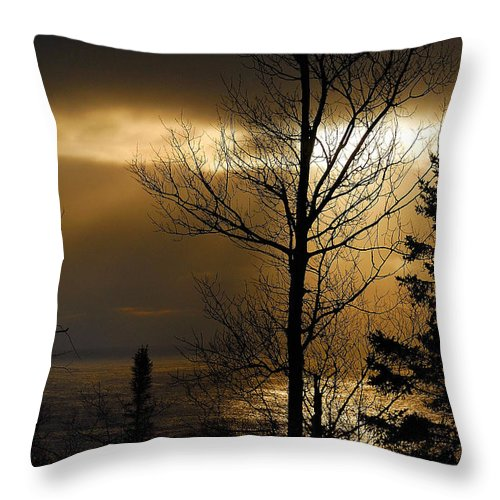 Nature Throw Pillow featuring the photograph Winter Sunrise 1 by Sebastian Musial