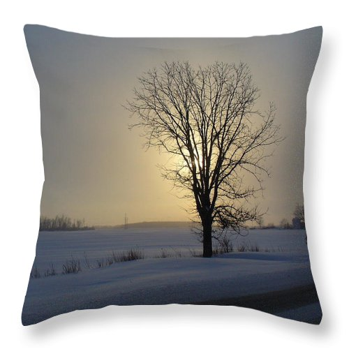 Sun Throw Pillow featuring the photograph Winter Sunset In Lambton County by Peggy King