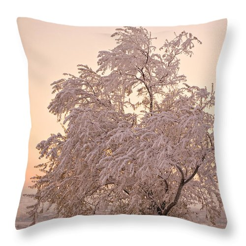 Winter Throw Pillow featuring the photograph Winter Sunset by Marilyn Hunt