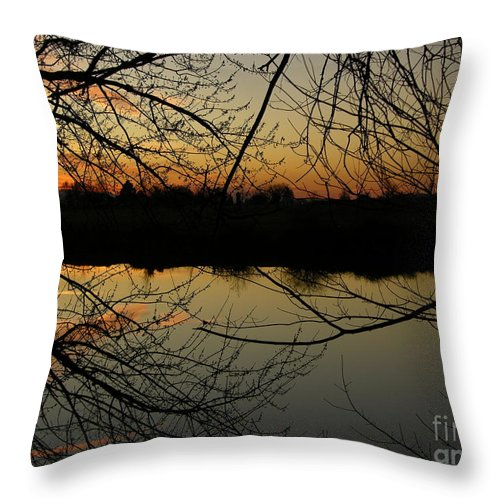 Sunset Throw Pillow featuring the photograph Winter Sunset Reflection by Carol Groenen