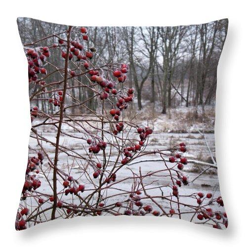 Winter Throw Pillow featuring the photograph Winter Time Frozen Fruit by Douglas Barnett