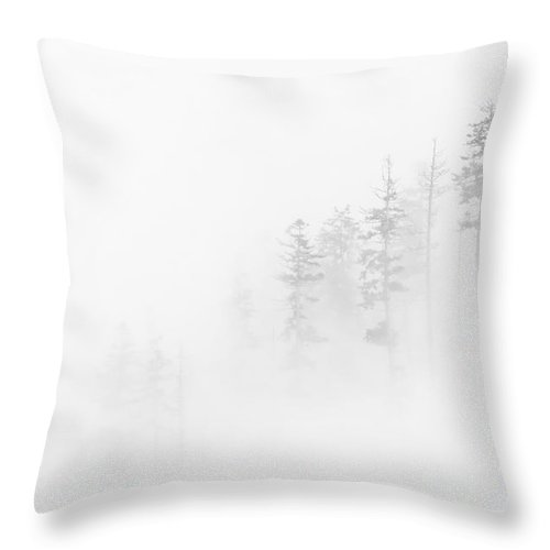 Winter Throw Pillow featuring the photograph Winter Veil by Mike Dawson