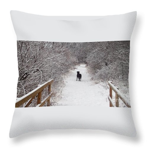 Winter Throw Pillow featuring the photograph Winter Walk by Deb Stroh Larson