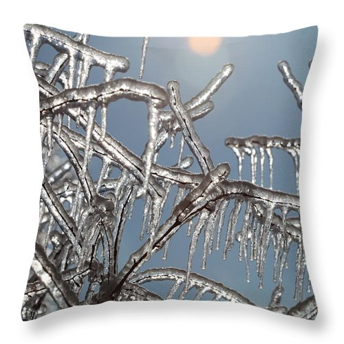 Winter Throw Pillow featuring the photograph Winter Warmth by Nadine Rippelmeyer