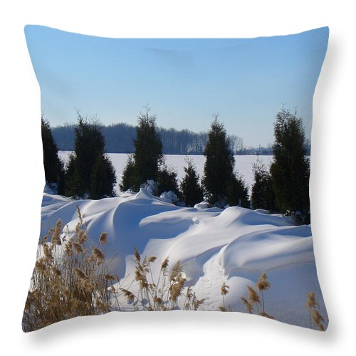 Snow Throw Pillow featuring the photograph Winter Waves by Peggy King