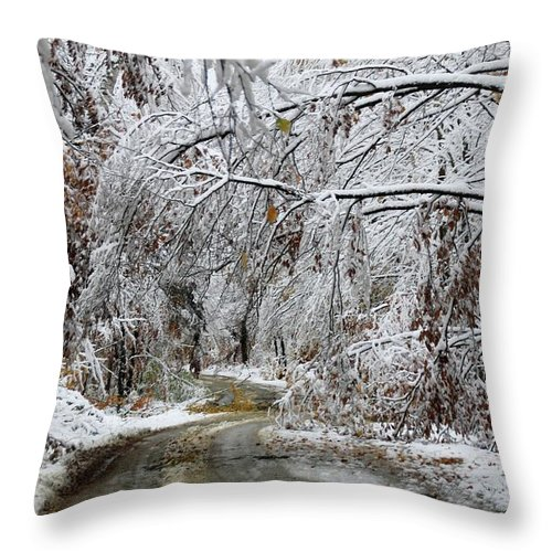 Snow Throw Pillow featuring the photograph Winter Wonderland by Laurie Baird