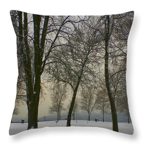 Park Throw Pillow featuring the photograph Winter Wonderland by Idaho Scenic Images Linda Lantzy