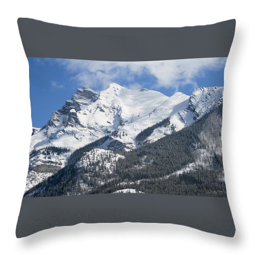 Winter Throw Pillow featuring the photograph Winter Wonderland by Tiffany Vest
