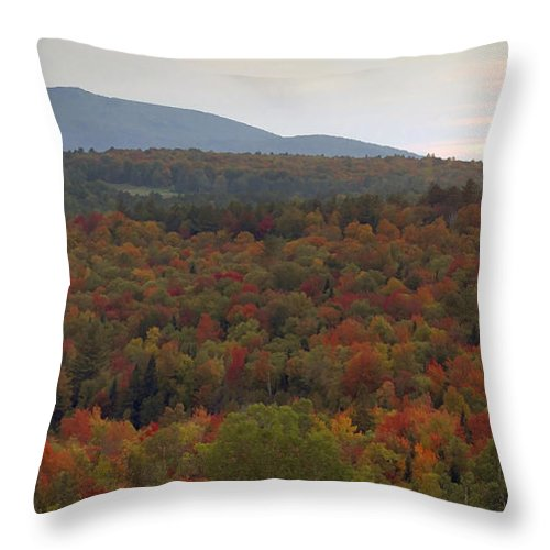 Fall Throw Pillow featuring the photograph Winters Approach by David Lee Thompson
