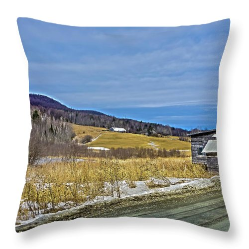 Landscape Throw Pillow featuring the photograph Winters End by Ron Christie