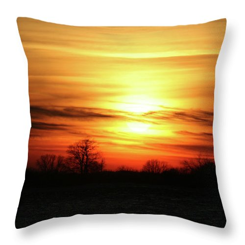Winter Throw Pillow featuring the photograph Winters Morning by Tommy Anderson