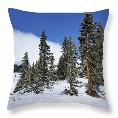 Colorado Throw Pillow featuring the photograph Winter's Peace by Leda Robertson