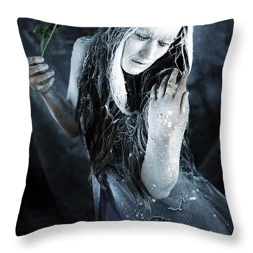 Fine Art Throw Pillow featuring the photograph Winter's Sorrow by Cliff Nixon