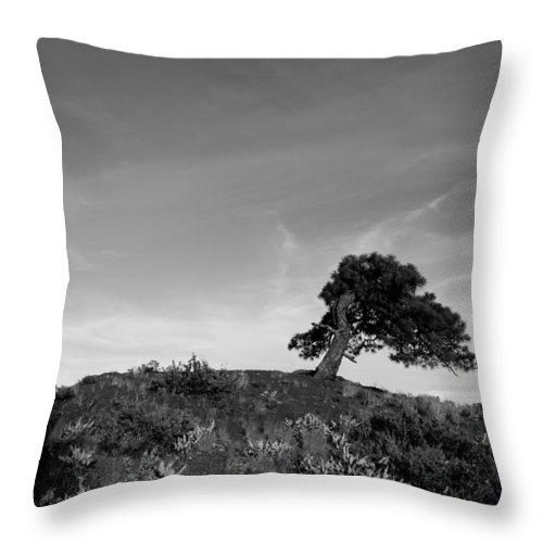 Tree Black White Winthrop Wa Northwest Throw Pillow featuring the photograph Winthrop Wa by Rick Takagi