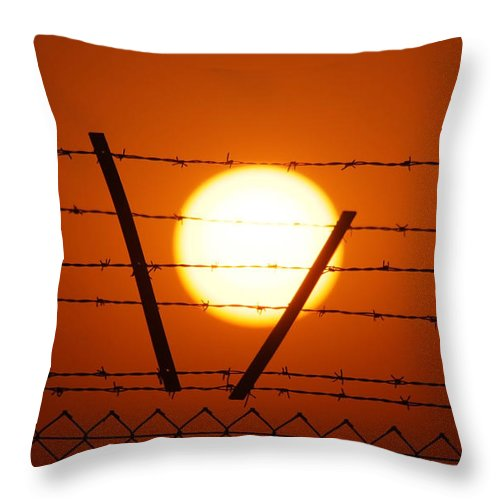 Sun Throw Pillow featuring the photograph Wire And Sun by Cliff Norton
