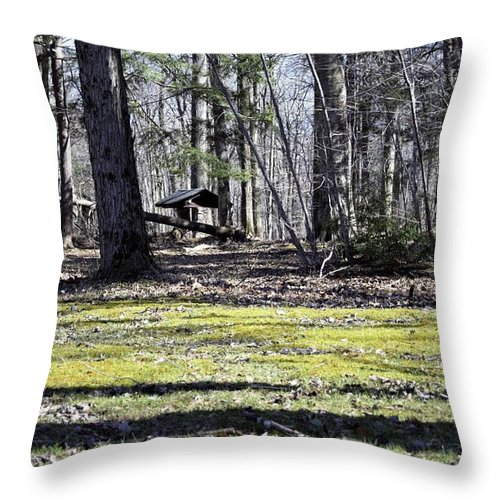 Park Throw Pillow featuring the photograph Wishing Well by Christina McNee-Geiger