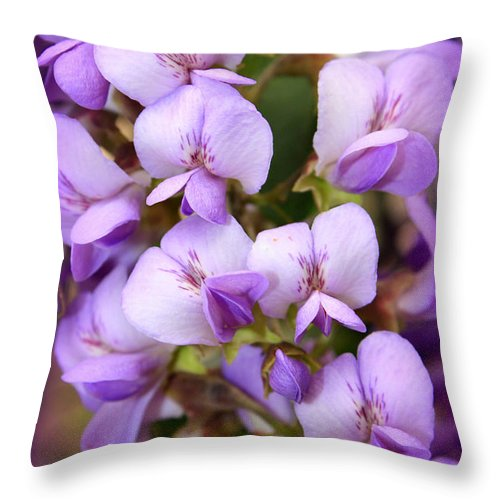 Purple Throw Pillow featuring the photograph Wisteria Blossoms by Carol Groenen
