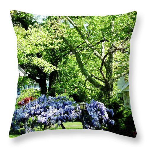 Spring Throw Pillow featuring the photograph Wisteria On Lawn by Susan Savad