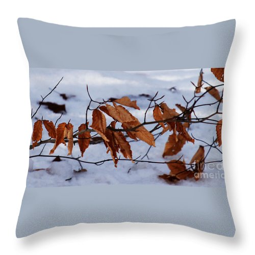 Autumn Throw Pillow featuring the photograph With Autumn's Passing by Linda Shafer