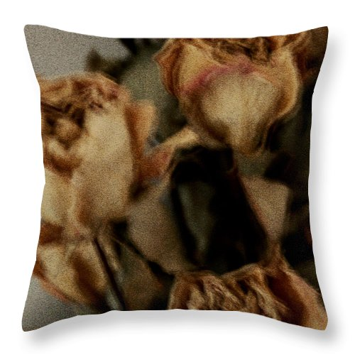 Roses Throw Pillow featuring the photograph Withering by Linda Shafer