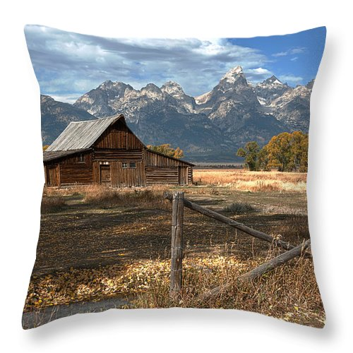Grand Tetons Throw Pillow featuring the photograph Withstanding The Test Of Time by Sandra Bronstein