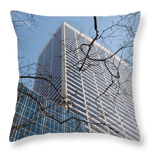 Architecture Throw Pillow featuring the photograph Wood And Glass by Rob Hans