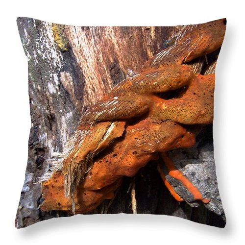 Wood Throw Pillow featuring the photograph Wood And Iron Braid Image by Laurie Paci
