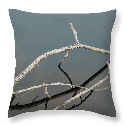 Blue Throw Pillow featuring the photograph Wood In The Water by Rob Hans