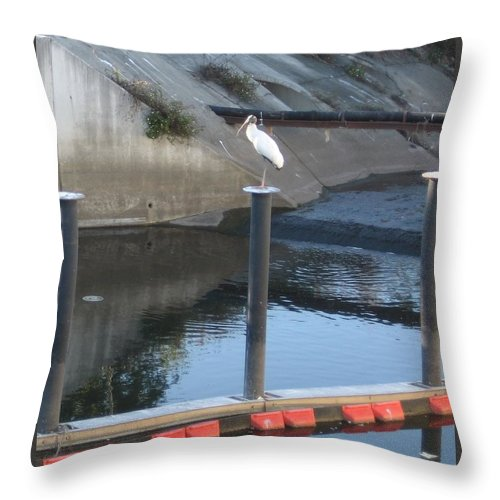 Wood Stork Throw Pillow featuring the photograph Wood Stork 1 Meander by Stephen Hawks