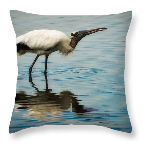 Stork Throw Pillow featuring the photograph Wood Stork by Rich Leighton