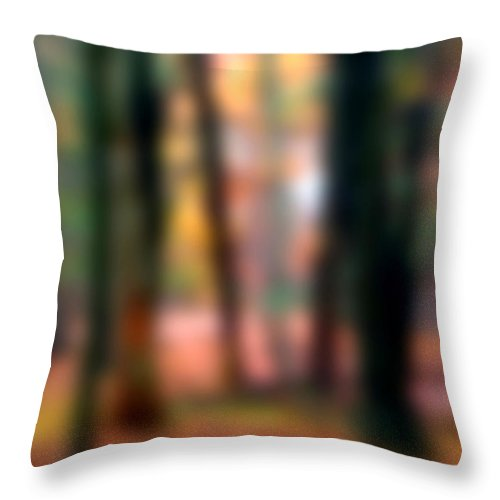Autumn Throw Pillow featuring the painting Wooded Wonderland by Paul Sachtleben
