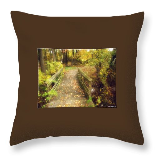 2d Throw Pillow featuring the photograph Wooden Bridge by Brian Wallace