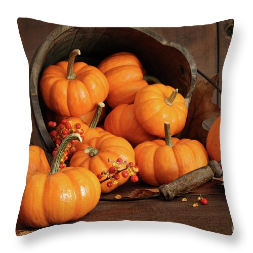 Autumn Throw Pillow featuring the photograph Wooden Bucket Filled With Tiny Pumpkins by Sandra Cunningham