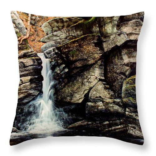 Waterfall Throw Pillow featuring the painting Woodland Falls by Frank Wilson