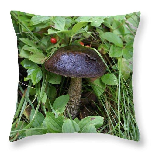 Mushroom Throw Pillow featuring the photograph Woodland Mushroom by Mary Ourada