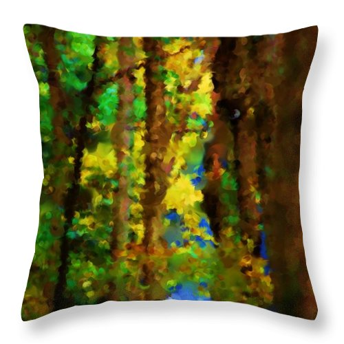 Digital Photograph Throw Pillow featuring the photograph Woods Approach To Lake by David Lane
