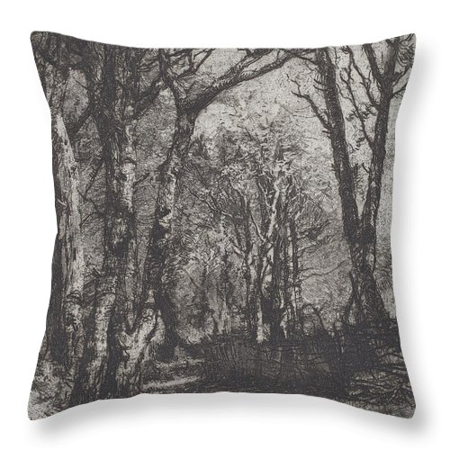 Throw Pillow featuring the drawing Woods [bosco] by Mos? Di Giosu? Bianchi